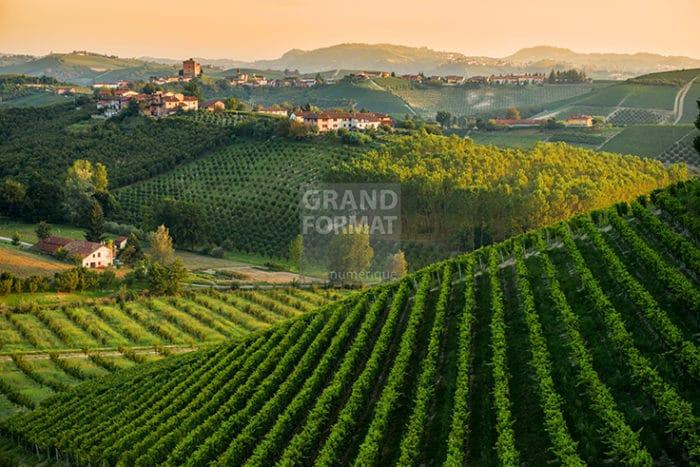 Paysage vigne photo impression et toile