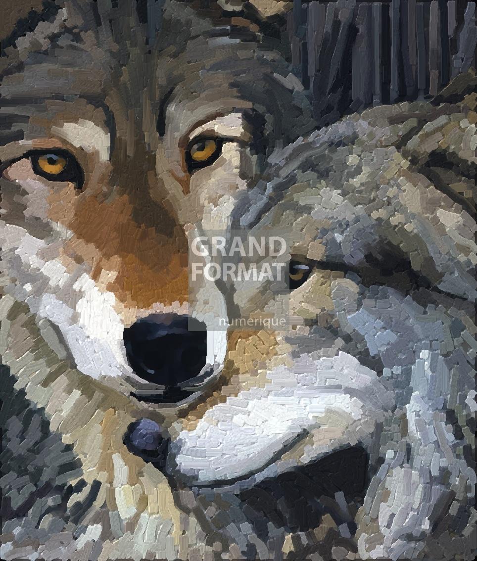 Loups peinture à télécharger
